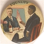 Theodore Roosevelt, Booker T. Washington Equality
