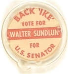 Back Ike, Sundlun for Senator Rhode Island Plastic Badge