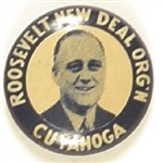 Franklin Roosevelt New Deal Ohio