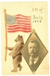 Roosevelt Teddy Bear Postcard