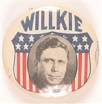 Willkie Classic Shield Celluloid